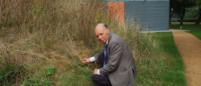 Dr Alan Brampton discovered the rare bees
